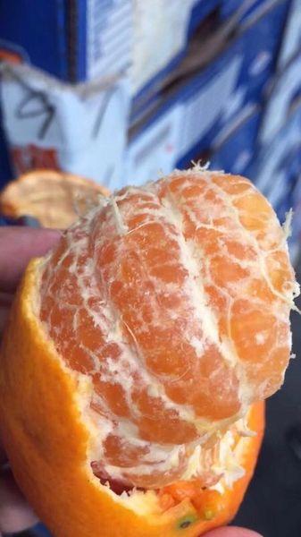 Sweet Wo Mandarines 广西武鸣沃柑礼盒10磅箱