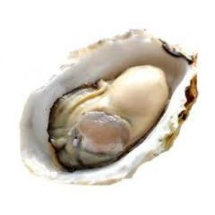 Seafood_Local Live Pearl Oyster 12 counts【干净无沙/本地高端西餐厅专供】温岛鲜活珍珠蚝一打