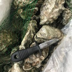 Oyster Open Tool/耐用生蚝开启刀