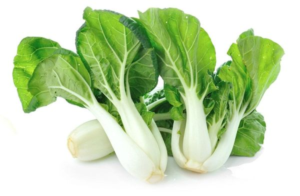 Veg_bok Choy 奶油白菜心1磅