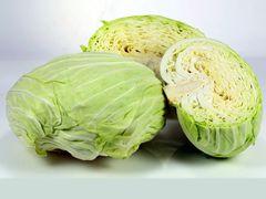 Taiwan Green Cabbage 本地金穗农场高丽菜