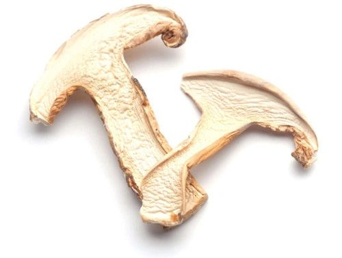 Dry Sliced Pine Mushroom本地特级野生松茸干1磅袋