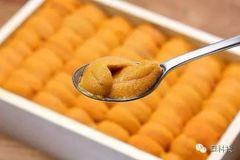 Hokkaido Sea urchin 250 gbox 【黄色钻石,肉质甜美细致】北海道马粪海胆250克盒