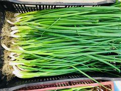Veg.o_Local organic green onion 0.5 lb/bunch本地慈心有机山东香葱0.5磅扎