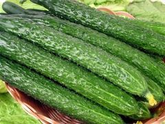 Local organic barbed Cucumber 本地慈心农场有机刺黄瓜3根(约1.1磅)