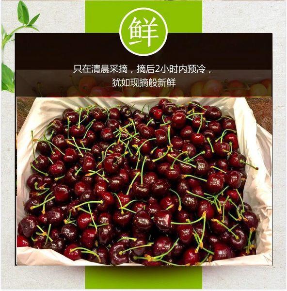 【中国直邮/7月9日发货】华盛顿9ROW特大红樱桃4斤箱