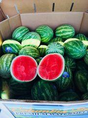 【每人限购2颗】Fresh Jumbo Watermelon 新鲜沙瓤大甜西瓜,每颗约9磅