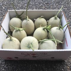 【热门推荐】本地慈心有机日本网纹蜜瓜