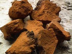 Canadian Wild Chaga Chunks 【感恩巨献】加拿大野生白桦茸1磅袋(大块状)