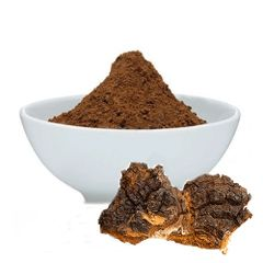 Canadian Wild Chaga Powder 【感恩巨献】加拿大野生白桦茸(已研磨成粉)