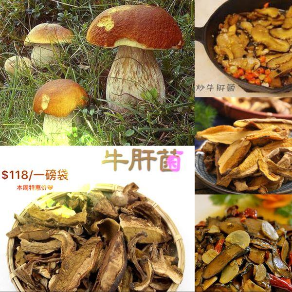 Dry Porcini Mushroom野生一级牛肝菌干1磅袋【回国必买清单】