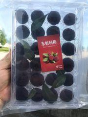 Sweet Dongkui Bayberry【空运最新到】大号东魁杨梅【包甜】