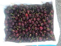 Red Cherry甜脆红樱桃2磅袋