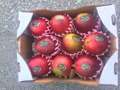 Air Fresh Mango Set 巴西椰香芒2颗+台湾爱文芒2颗