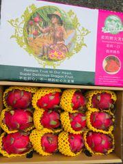Premium Dragon Fruits 【柔鸣牌】特级海南红肉火龙果3颗