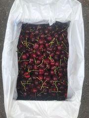 Local Cherries 本地okanagan有机认证甜脆红樱桃3磅袋