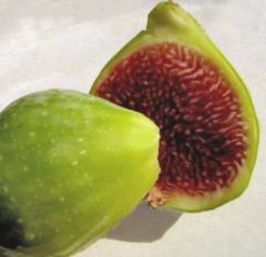 Pro_Local Fresh Wild Green Figs 本地野生无花果