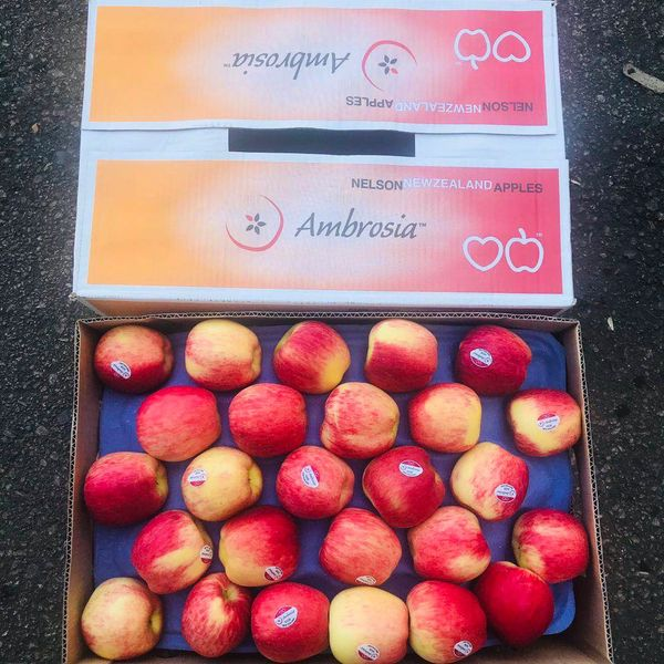 Newzealand Ambrosia Apple 【最新到店】新西兰蜜香安培士苹果
