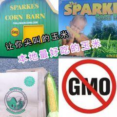 Veg_【Non-GMO】chiliwack【甜脆王/烧烤必备】水果玉米5根