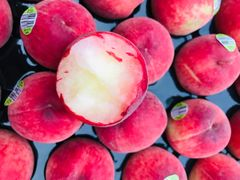 Australian Peaches 澳洲特级水蜜桃(中号)
