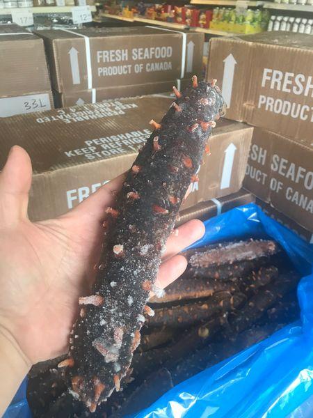 Canadian kings Sea Cucumbers 2020新季加拿大哥伦比亚帝王参