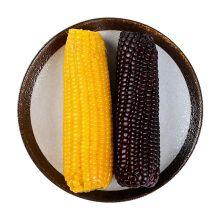 Organic wax Corn乡甜黑龙江有机糯玉米
