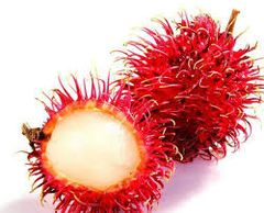 Australian air fresh Rambutan 澳洲空运红毛丹
