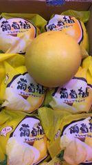 Grape Pomelo 【爆汁】葡萄柚
