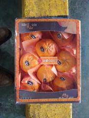 Korea Redhyang box 空运韩国济州岛红香蜜橘2公斤礼盒(7-8颗)