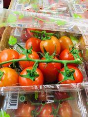 Roma Tomatoes 本地带枝小罗马番茄