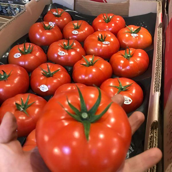 Local beefsteak Tomatoes 本地beefsteak西红柿
