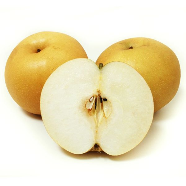 Korean Jumbo Pear 新高梨