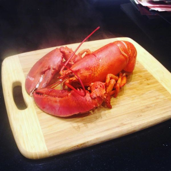 Canadian Live lobster 空运东岸鲜活大龙虾(包鲜活)