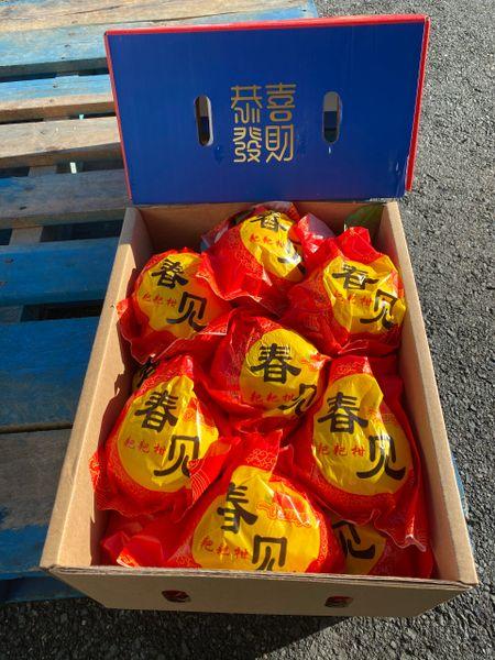 Chunjian Oranges 【恭喜发财】春见耙耙柑礼盒