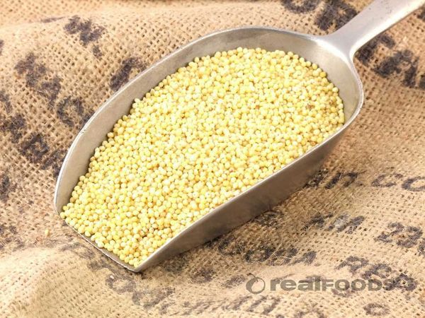 GRAIN_ Organic Millet 1lb / bag 散装有机黄小米1磅袋