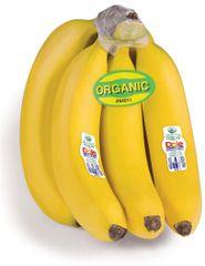 Pro.o_South America Bananas organic 2lbs 南美香蕉2磅
