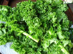 Veg.o_Organic Green Kale 1 bunches 有机绿甘蓝1扎