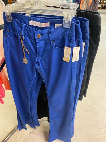 Women's Royal Blue Tin Haul Pants