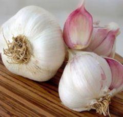 California Garlic Infused Extra Virgin Olive Oil