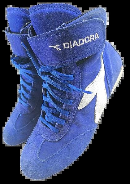 2004 true vintage diadora hightops Uk5