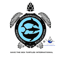 SAVE THE SEA TURTLES INTERNATIONAL