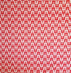 Red Checkered Skull & Crossbone Bandana