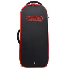 Bagpipe Skin Hedgehog Pipe Case