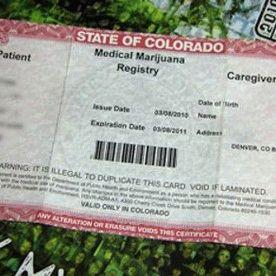MarijuanaVerify.com & VerifyMarijuana.com