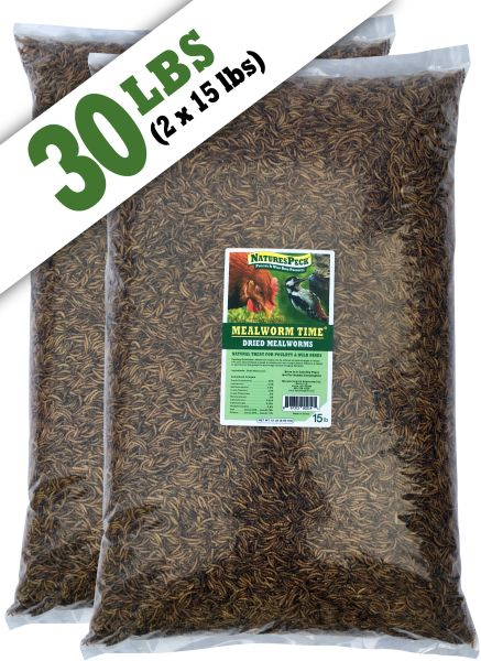 Mealworm Time® Dried Mealworms (30 lbs)
