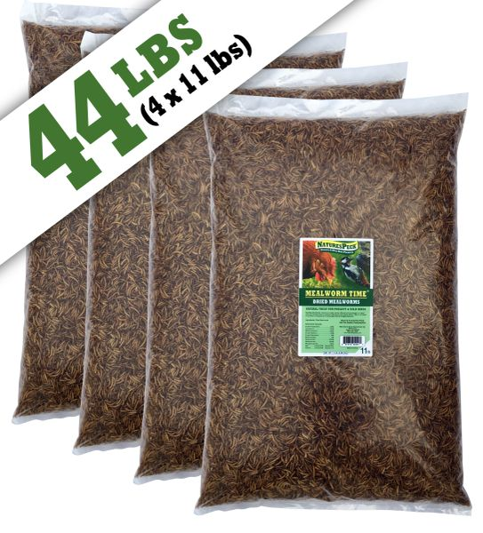 Mealworm Time® Dried Mealworms(44 lbs)