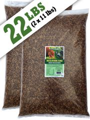 Mealworm Time® Dried Mealworms 22 lbs