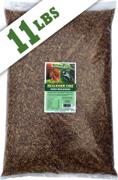 Mealworm Time® Dried Mealworms (11 lb)