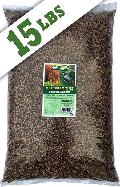 Mealworm Time® Dried Mealworms (15 lbs)