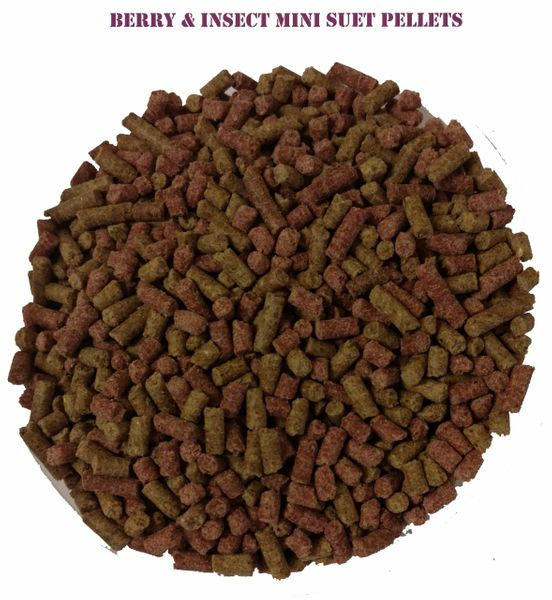 NEW, Peck 'A' Bites Veggie Suet Pellets (Mixed- Berry & Insect)